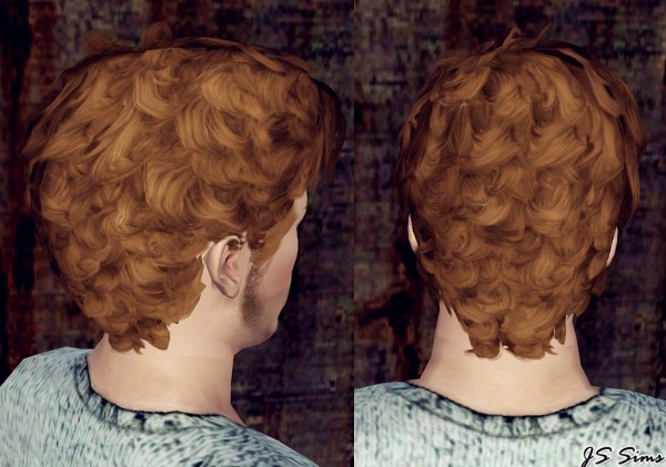 Fine Curly Hairstyle The Lindy Hop Edited By Js Sims 3 Sims 3 Hairs Hairstyles For Men Maxibearus