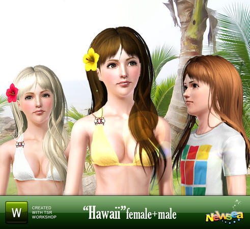 Hawaii hairstyle by NewSea for Sims 3