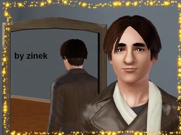 Middle parth hairstyle 2 by zinek  for Sims 3