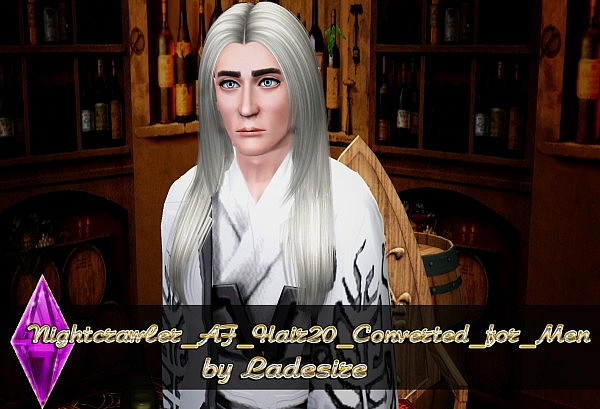 Nightcrawler Hair 20 Converted for Men by Ladesire for Sims 3
