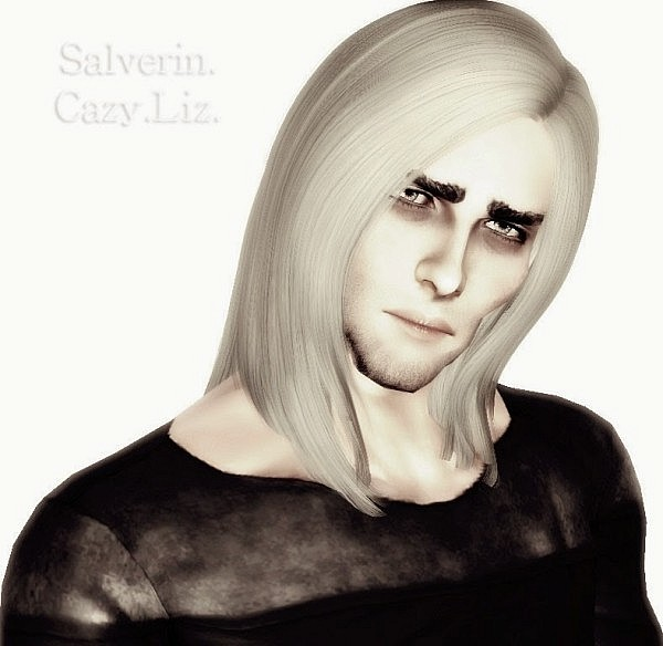 Cazy`s Liz hairstyle converted for men by Salverin for Sims 3