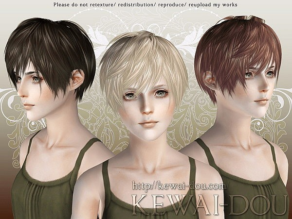 Lezginka hairstyle by Kewai Dou for Sims 3