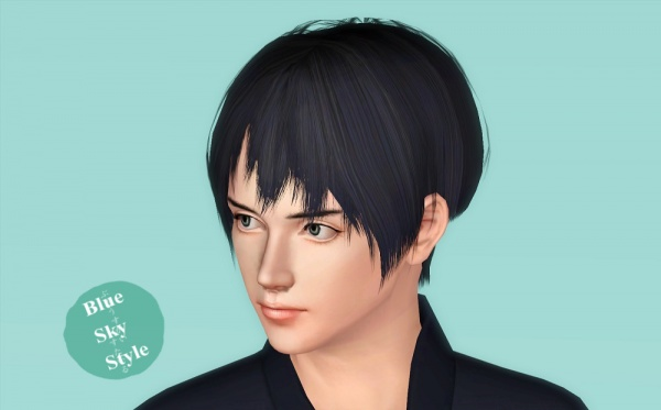 Kiku hairstyle by Blue Sky for Sims 3