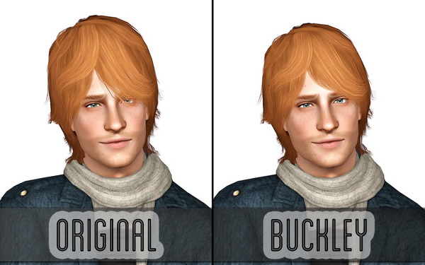 Ruh Roh Raggy hairstyle retextured by Buckley for Sims 3