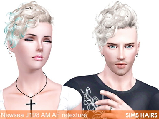 Newsea J198 Black Bullet AM AF hairstyle retextures by Sims Hairs