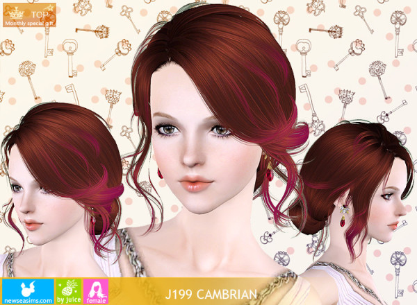J199 Cambrian hairstyle by NewSea for Sims 3